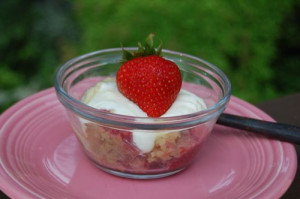 a strawberry rhubarb crumble 014