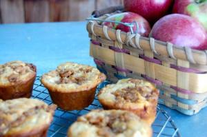 blog app muffin