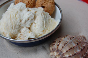 blog apricot ice cream