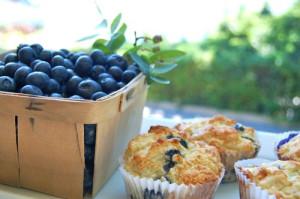 blog blueberry muffin