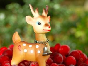 blog cranberry xmas