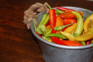 blog hot peppers