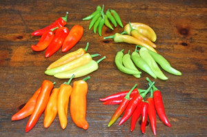 blog more hot peppers