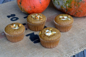blog pumpkin muf