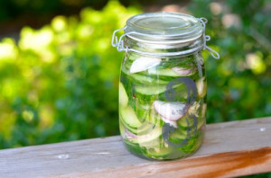 blog pickles