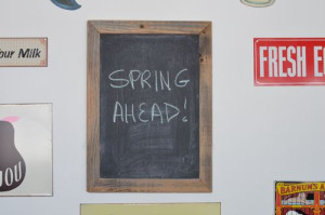 blog spring  ahead