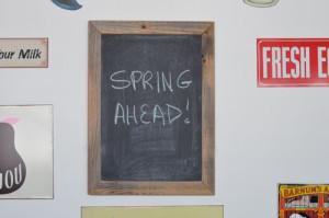 blog spring  ahead