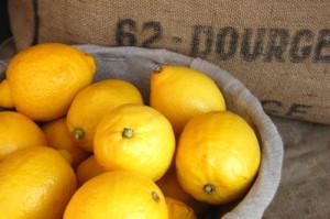 blog spring lemons