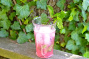 blog rhubarb mojito